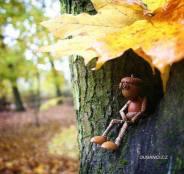 Acorn Figure in Tree.MLee
